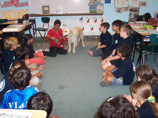 Therapy dog Angel at the American School of Bombay