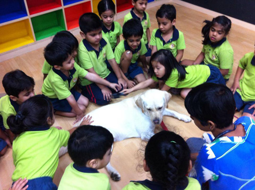 Therapy session at Oberoi International School