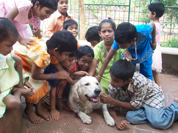 Children at an orphanage with Angel the therapy dog