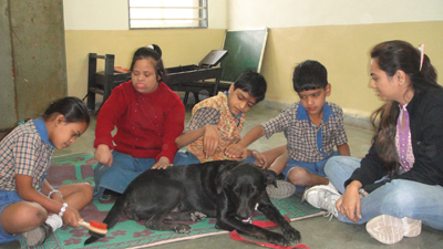 Therapy dog Abby plays with school children reducing negative behaviors and creating a sense of responsibility
