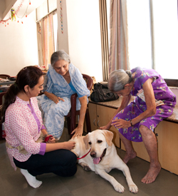 Therapy dog Angel works with the elderly at Dignity Foundation