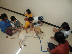 Children from Maasti ki Paathshaala at play with a therapet
