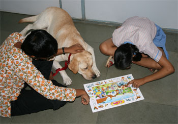 Therapy dog Bruno at S.P.J. Sadhana School in South Mumbai